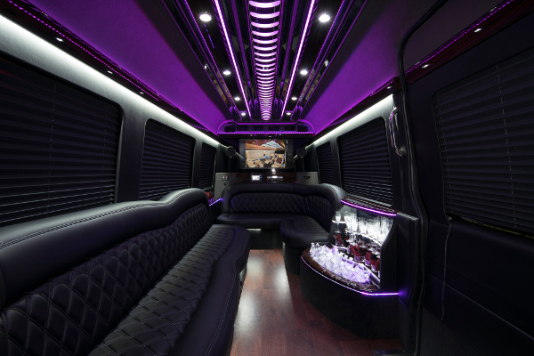 12 passenger sprinter in Hoover Interior