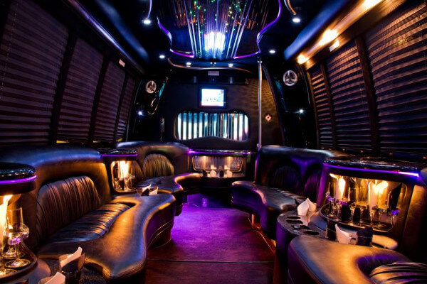 15 person party bus rental Hoover